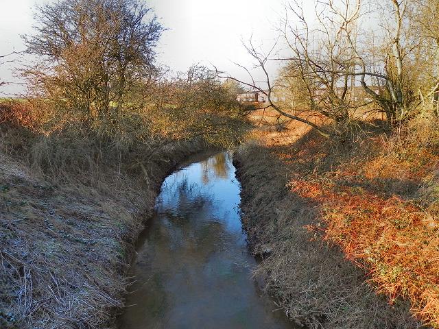 Red Brook