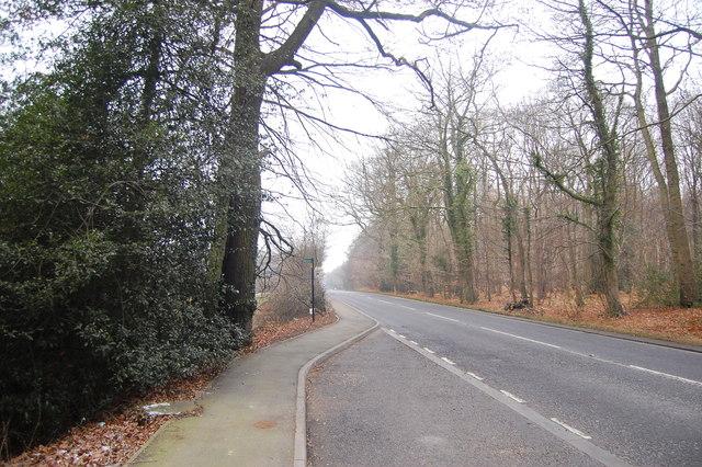 Maidstone Road