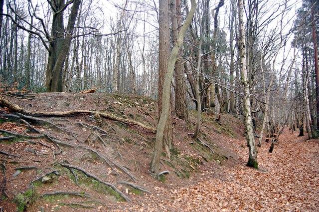 Ramparts, Oldbury Hill Fort