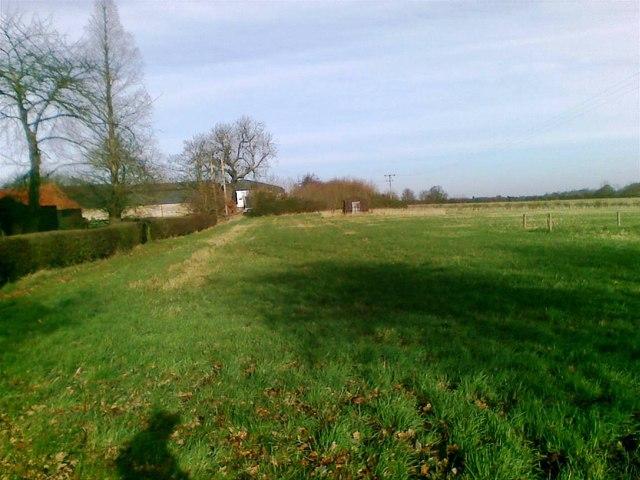Fields, High Laver