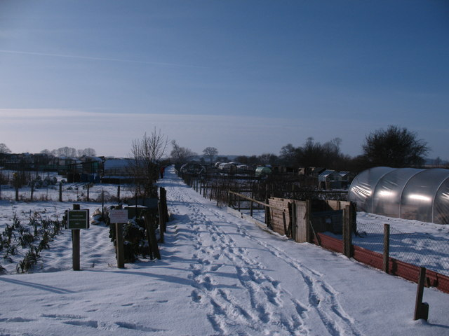 Allotments at Norby