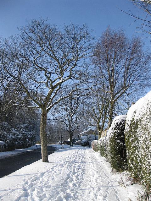 Castle Howard Road, a winter view
