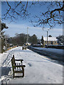 SE7771 : A seat in the snow by Pauline Eccles