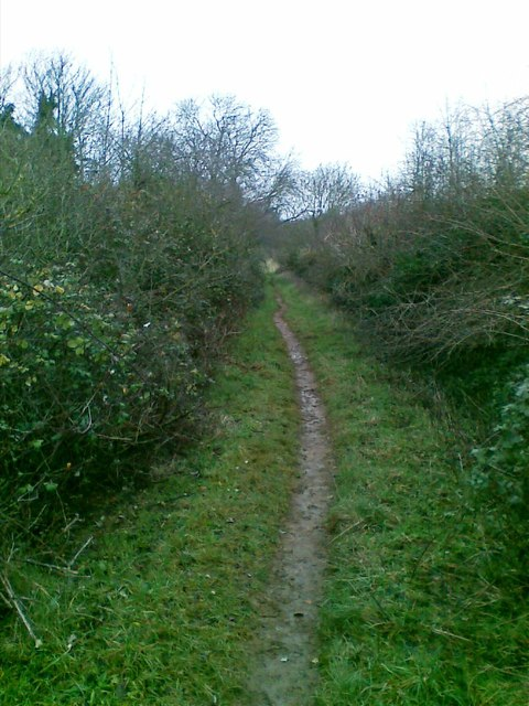 Path north of St Mary's Church