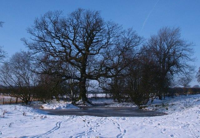 Frozen pond near South Kilvington