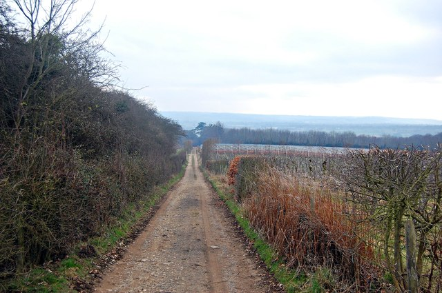 View down the Weald Way