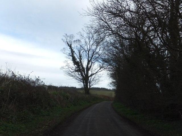 Minor road east of Lindridge Park
