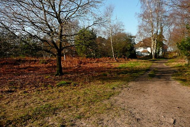 Path towards Headley Down