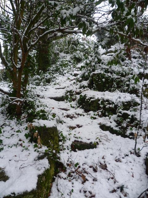 Snowy steps in Rockcliffe Gardens