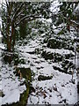 TQ4577 : Snowy steps in Rockcliffe Gardens by Ian Yarham