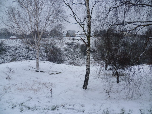 Looking across The Slade to Plumstead Common in the snow