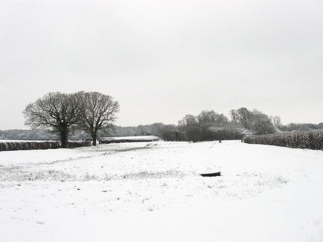 Former Lane to Muddles Green