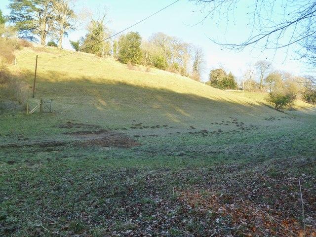Sapperton, hillside
