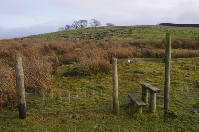 Stile, Cow Close Pasture