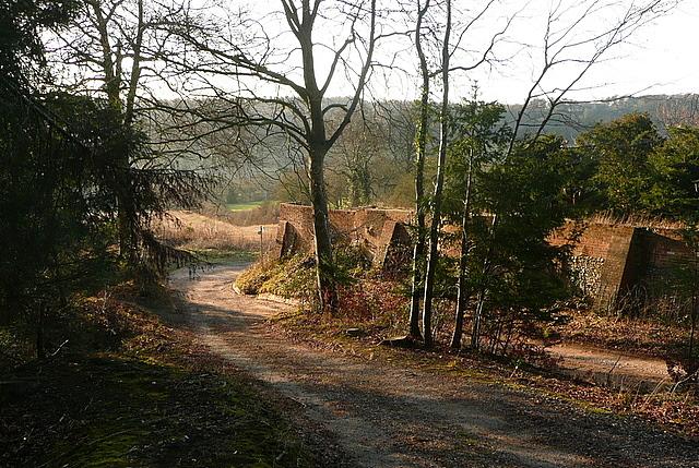 Corner of Bradenham Manor grounds