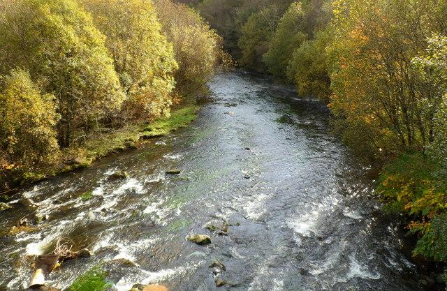 Rhondda Fawr flows away from Ystrad Rhondda railway station