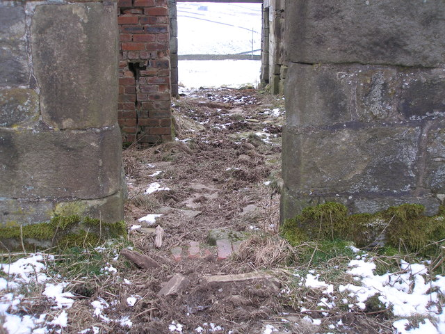 Cut benchmark on the derelict Lane Side Farm
