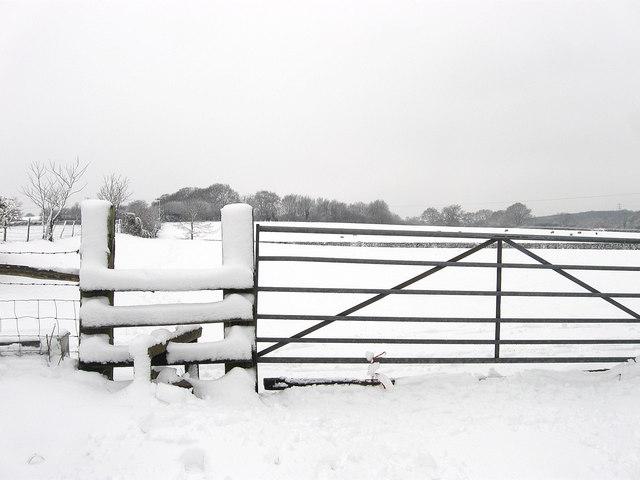 Snowy Stile