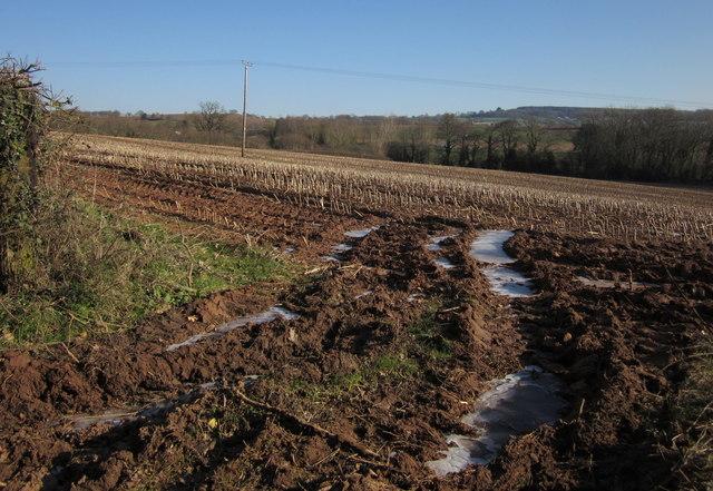 Icy stubble field, Kentisbeare