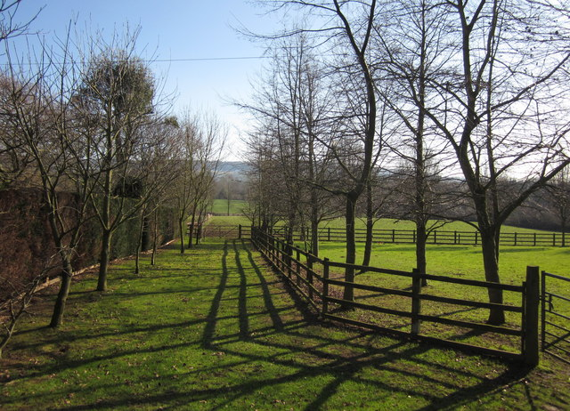 Fences by the lane, Colepark