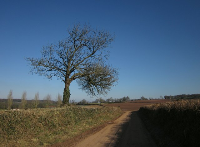 Green Lane to Highwood's Farm