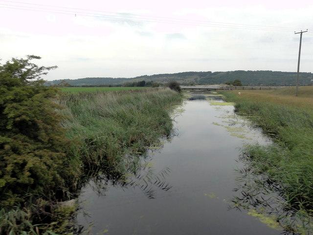 Canal Cutting near Botolph's Bridge