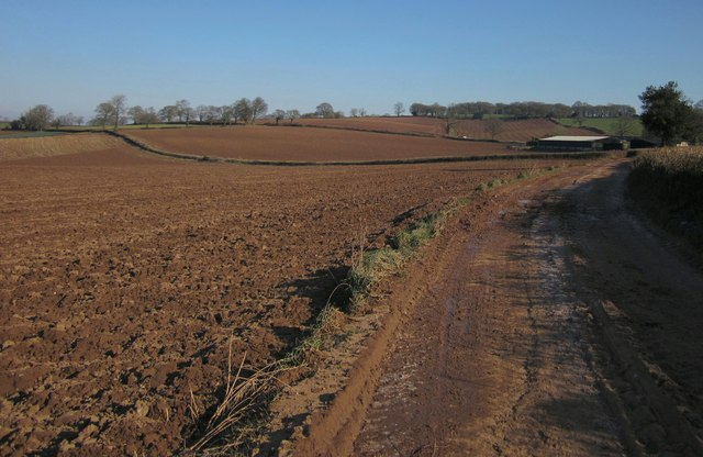 Red Devon soil, Highwood's Farm