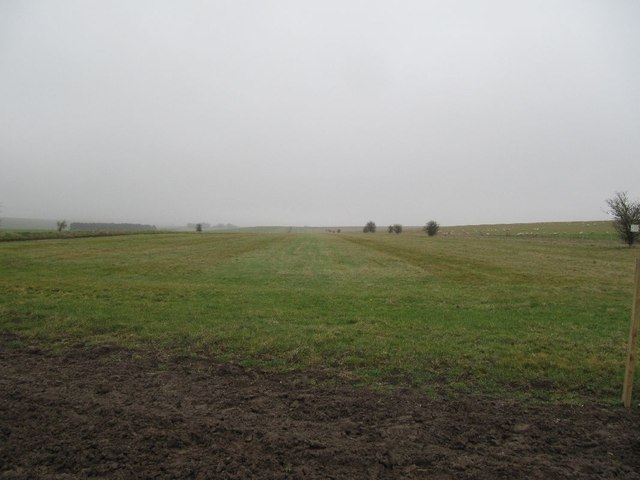 View of the Gallops