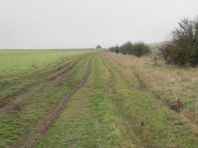 Towards Lowbury Hill