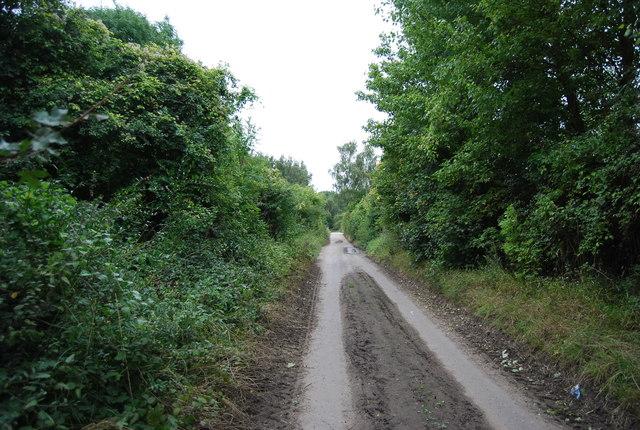 Medway Valley Walk heading north