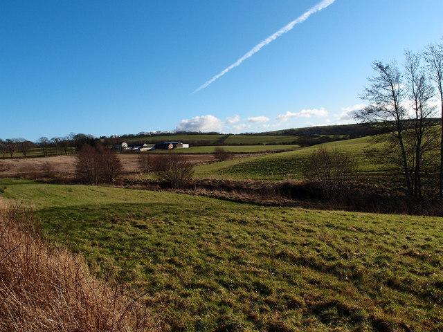 Fields, Friarland Farm