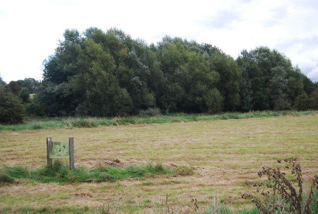 Bramford Meadows