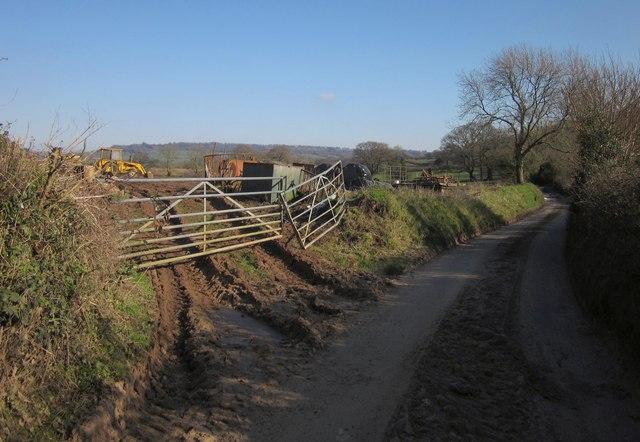 Lane near Sandfield Farm