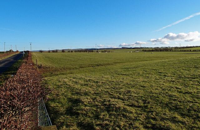 Minor Road and Farmland