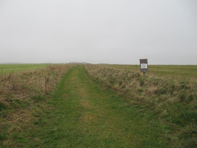 Track on the Gallops