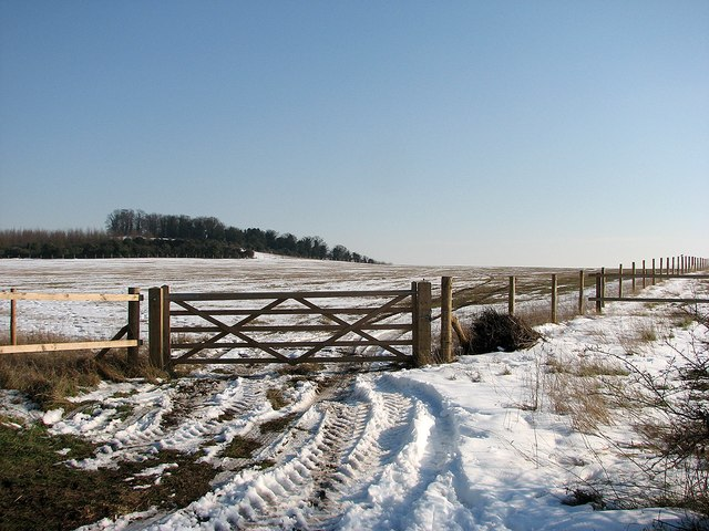Farm gate on the Gogs