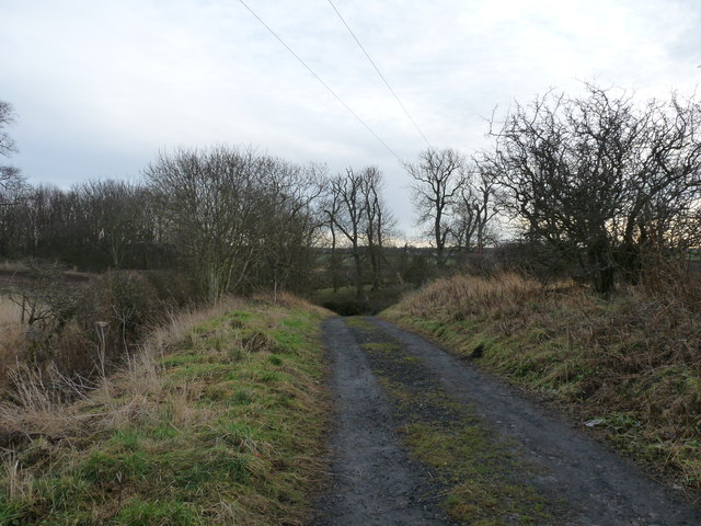 Old track leading to New Water Haugh