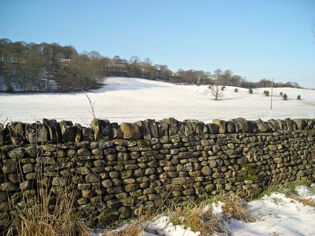 Unusual drystone wall
