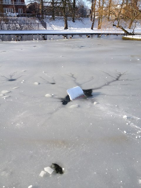 Danger, frozen pond, Rowntree park, York