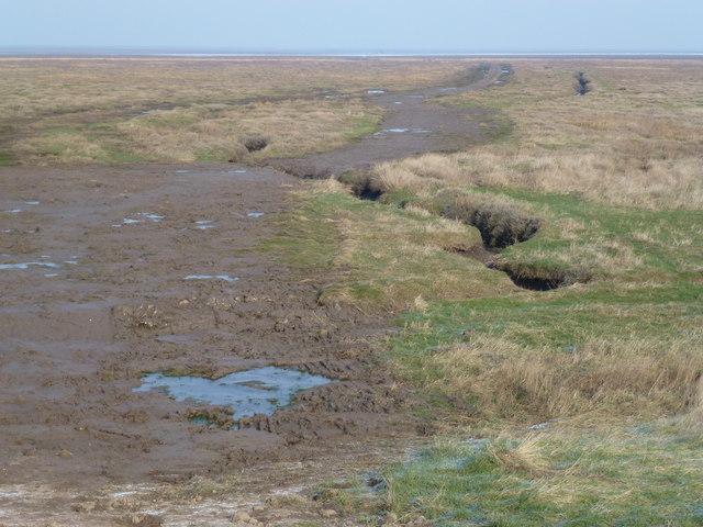 Destroyed salt marsh in the Wash near Sutton Bridge