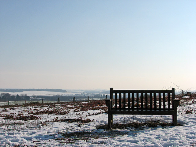 Magog Down: bench with a view