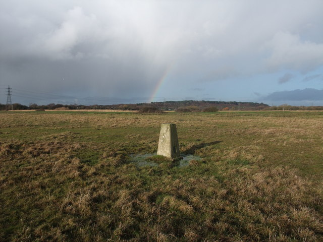 Trig Point on Winkton Common