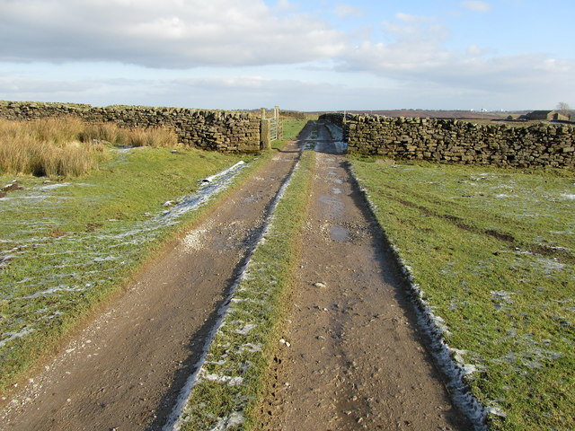 Access Track leading from Spittle Ings House