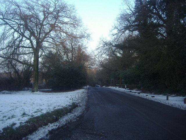 Tylers Causeway, Epping Green