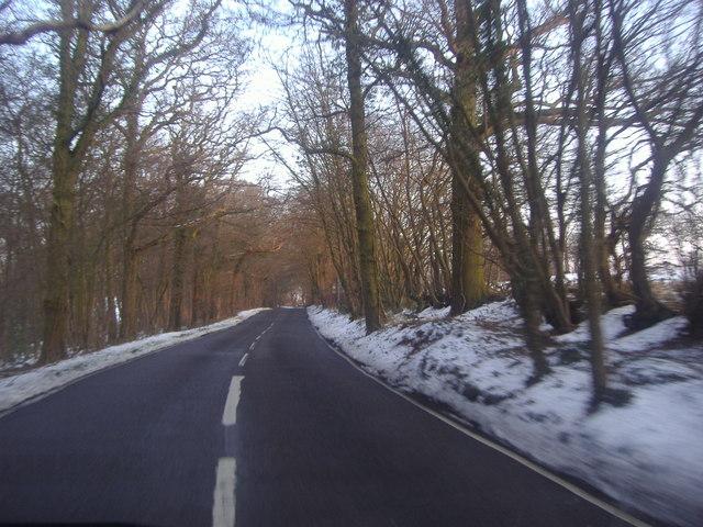 Woodfield Lane, Essendon