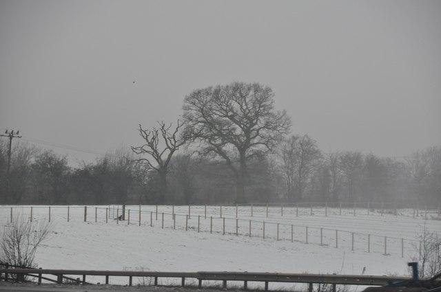 Bromsgrove : A Snowy Field