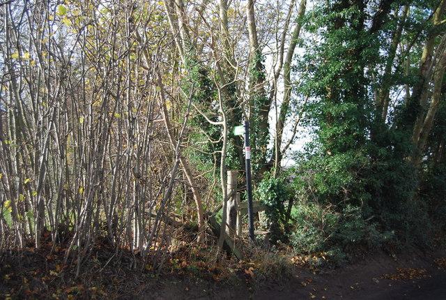 Footpath off Ewell Lane