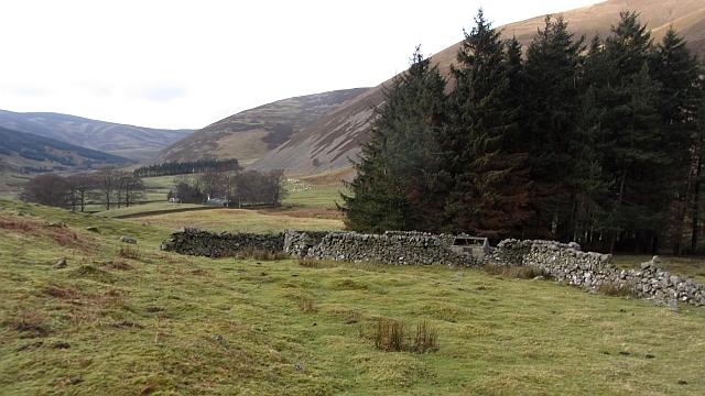 Stell, Glenrath Hope