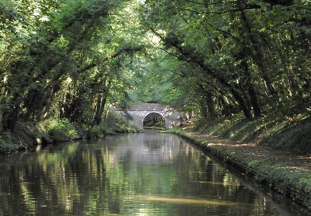 Shropshire Union Canal north of Wheaton Aston, Staffordshire