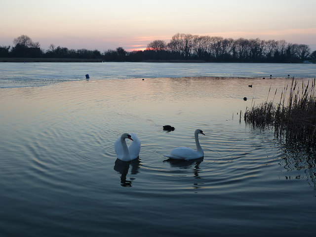 Sunset on Swan Lake